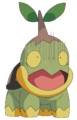 Turtwig – July 28, 2009