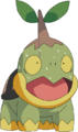 Turtwig – July 30, 2009